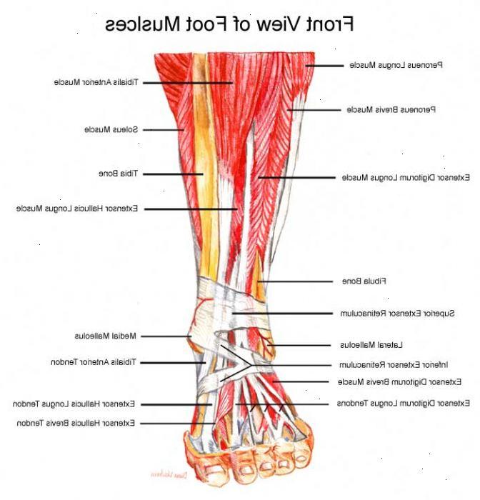 smärta i foten