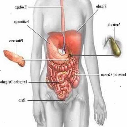 kramper i nedre del av magen blader